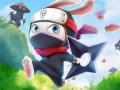 Juegos Ninja Rabbit